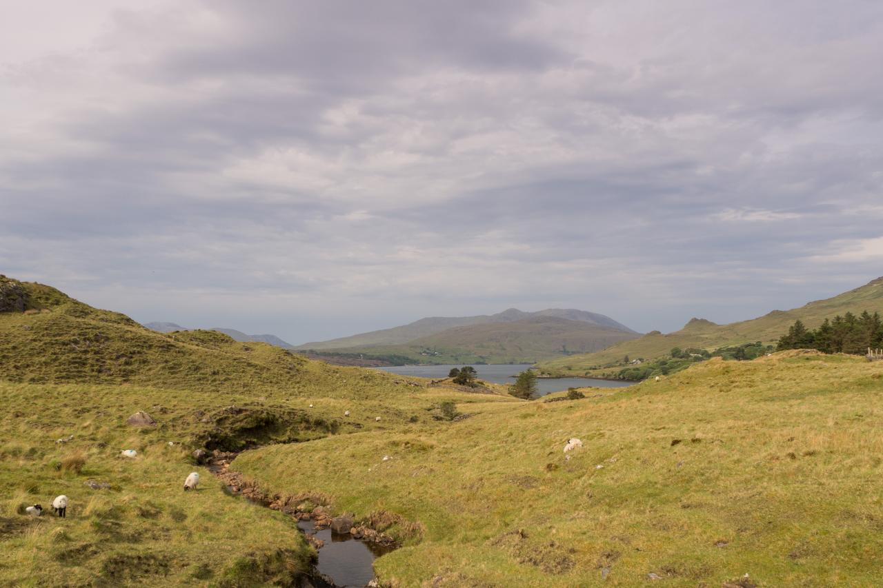 Best Irlande - Connemara -  mai 2017-35