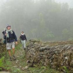 Inde - Sri Lanka La marche du prince
