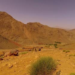 Maroc  (11)