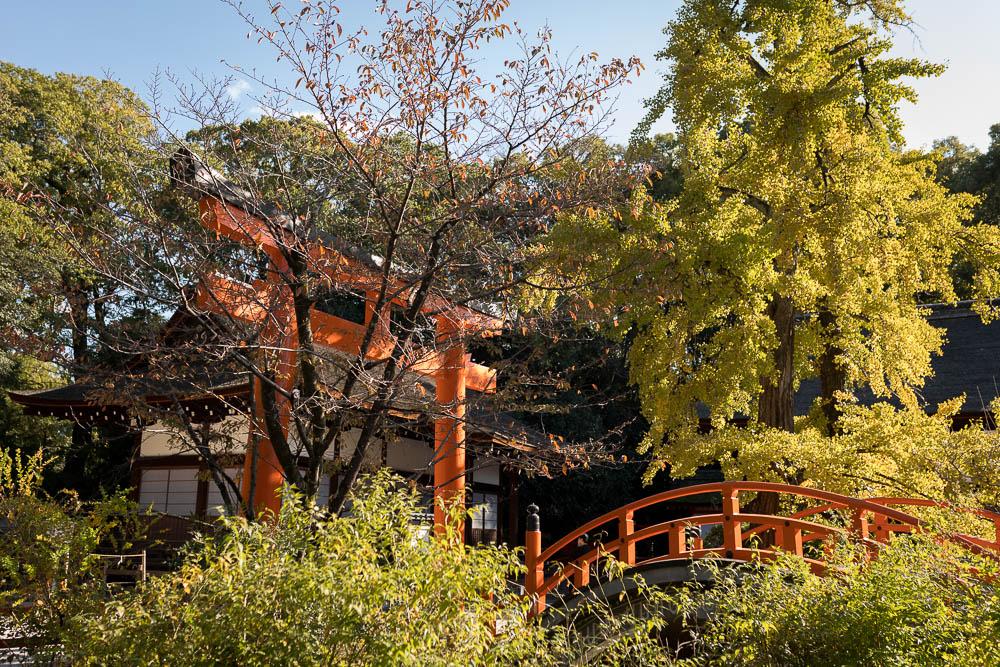 Un automne au Japon (114)