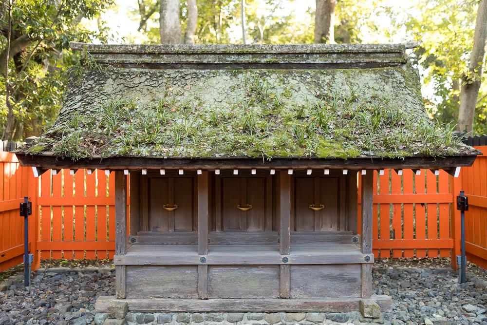 Un automne au Japon (118)