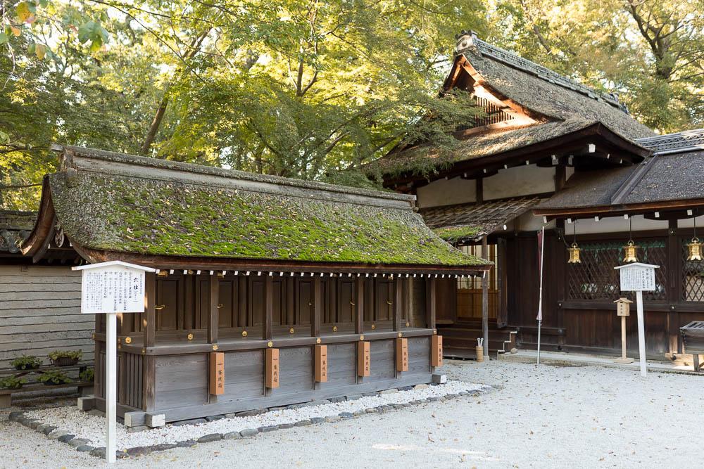 Un automne au Japon (119)