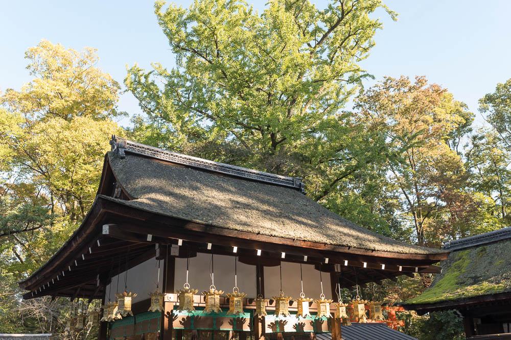 Un automne au Japon (120)