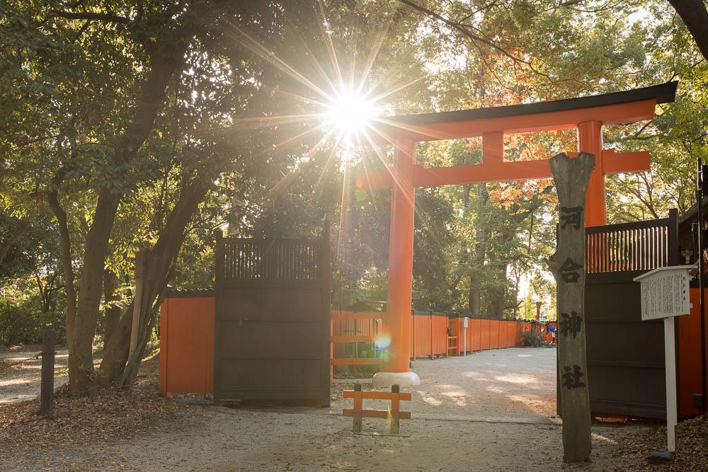 Un automne au Japon (126)