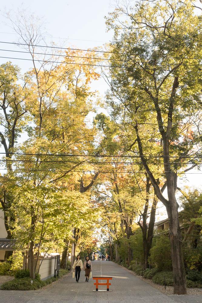 Un automne au Japon (127)