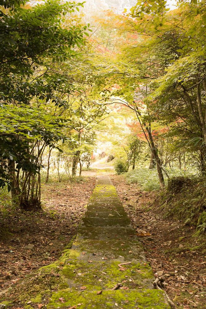 Un automne au Japon (14)