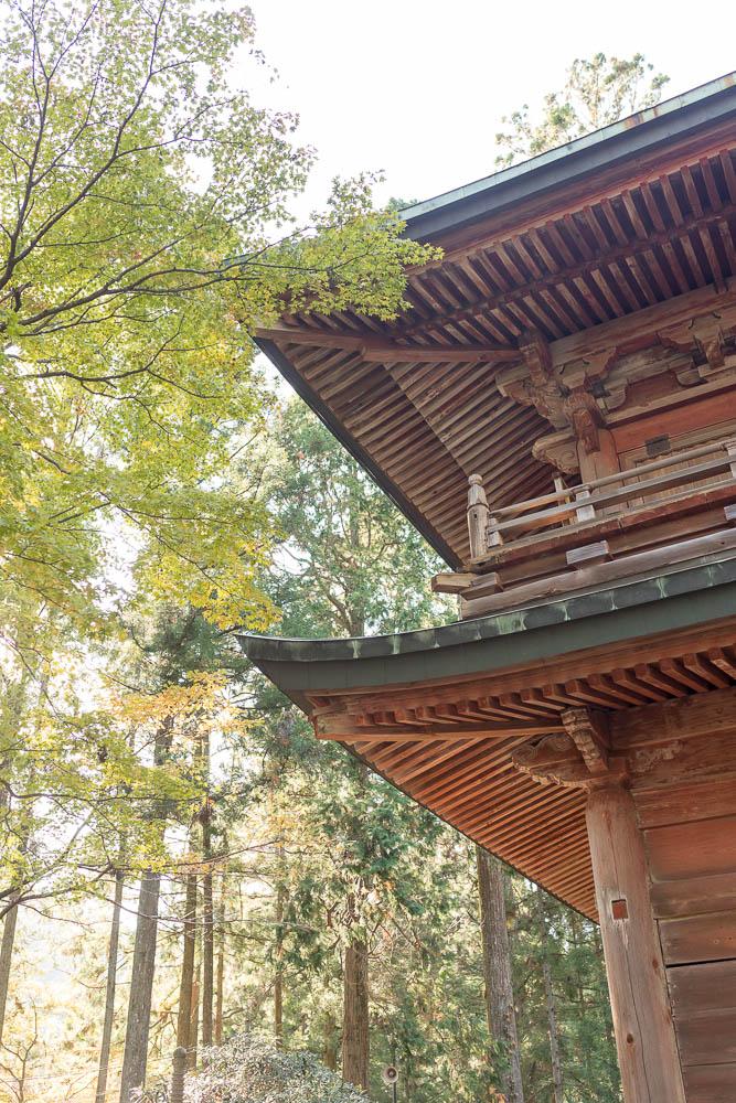 Un automne au Japon (146)