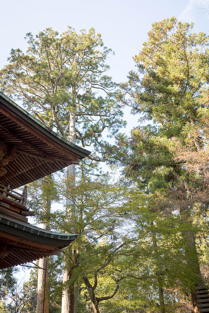 Un automne au Japon (147)