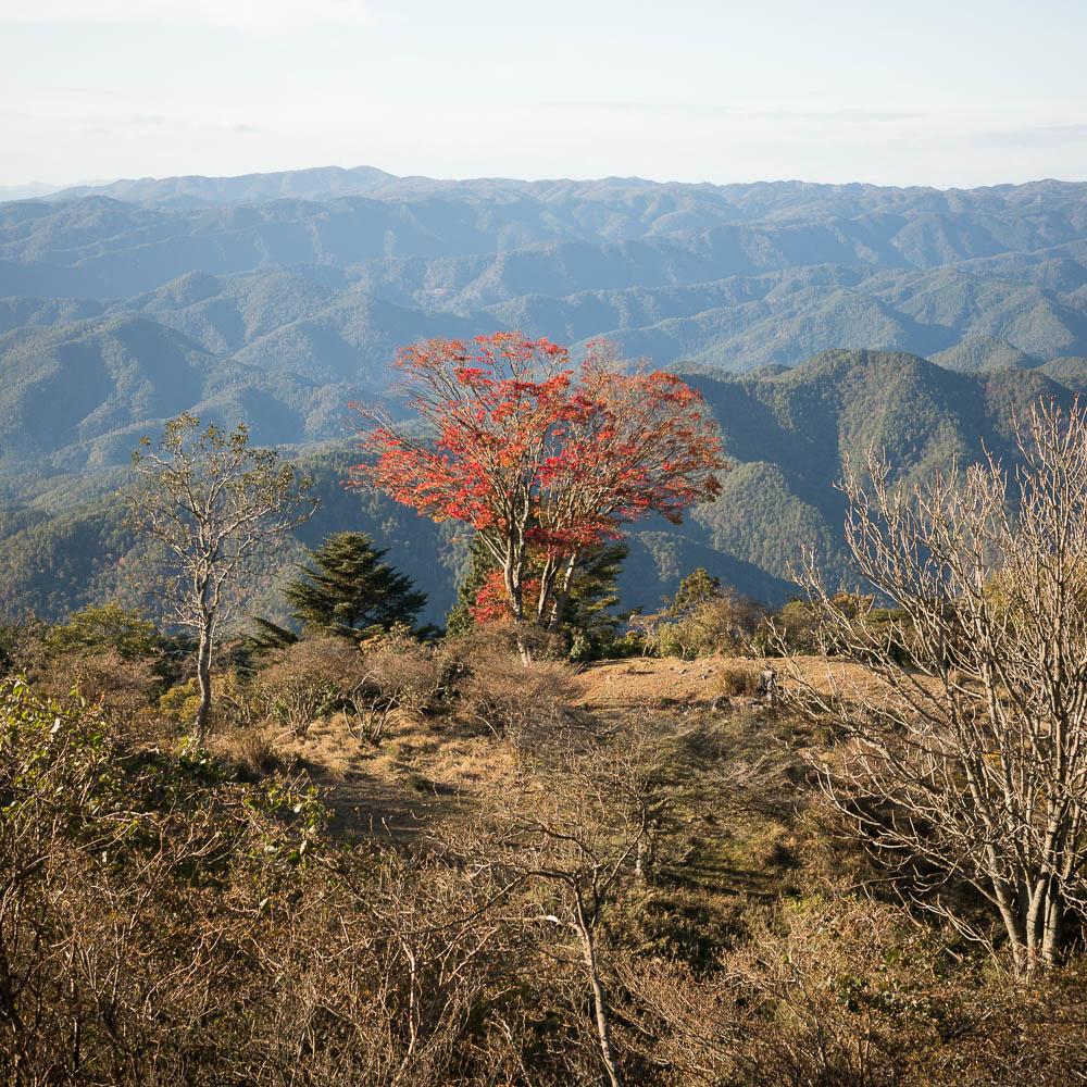 Un automne au Japon (151)