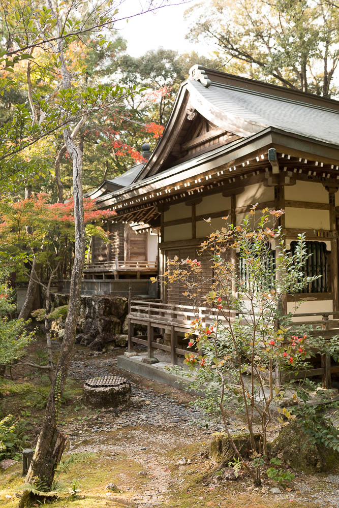 Un automne au Japon (220)