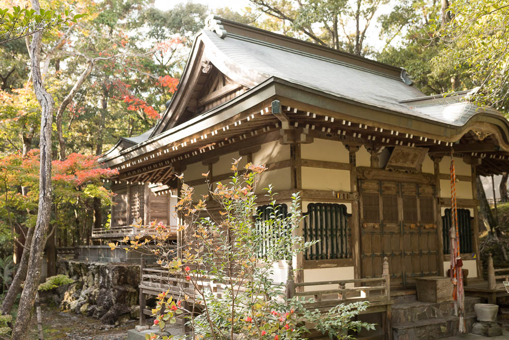 Un automne au Japon (221)