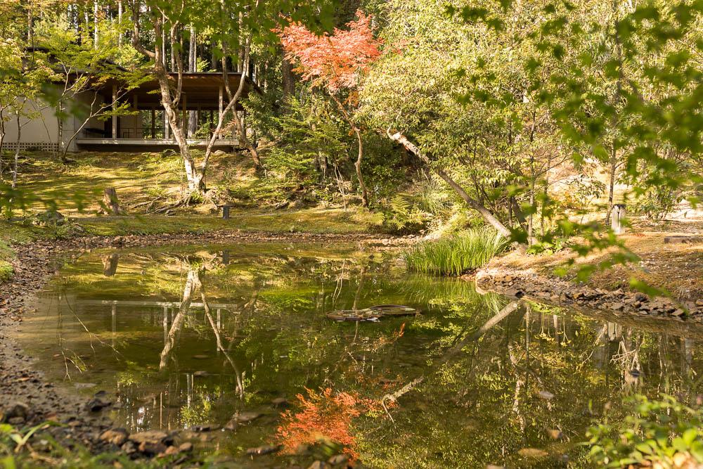 Un automne au Japon (222)