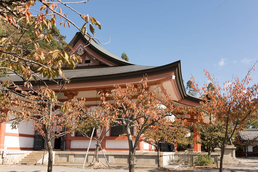 Un automne au Japon (33)