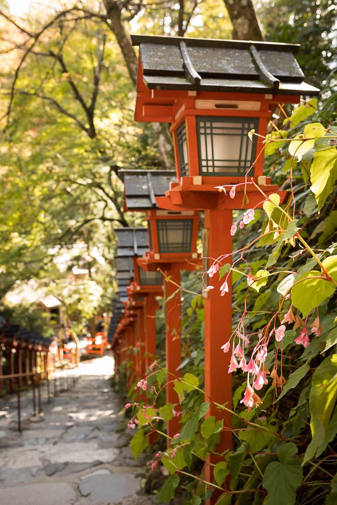 Un automne au Japon (35)