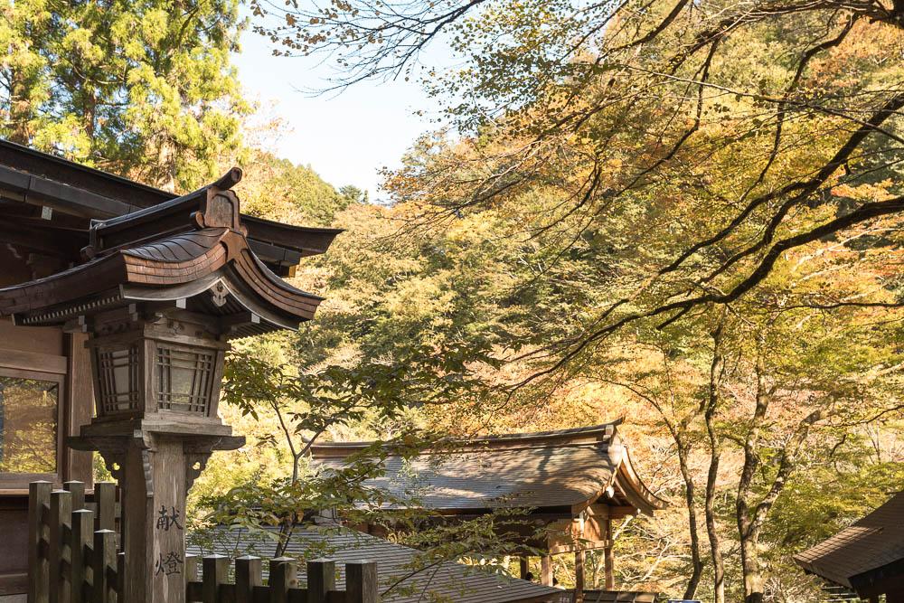 Un automne au Japon (37)