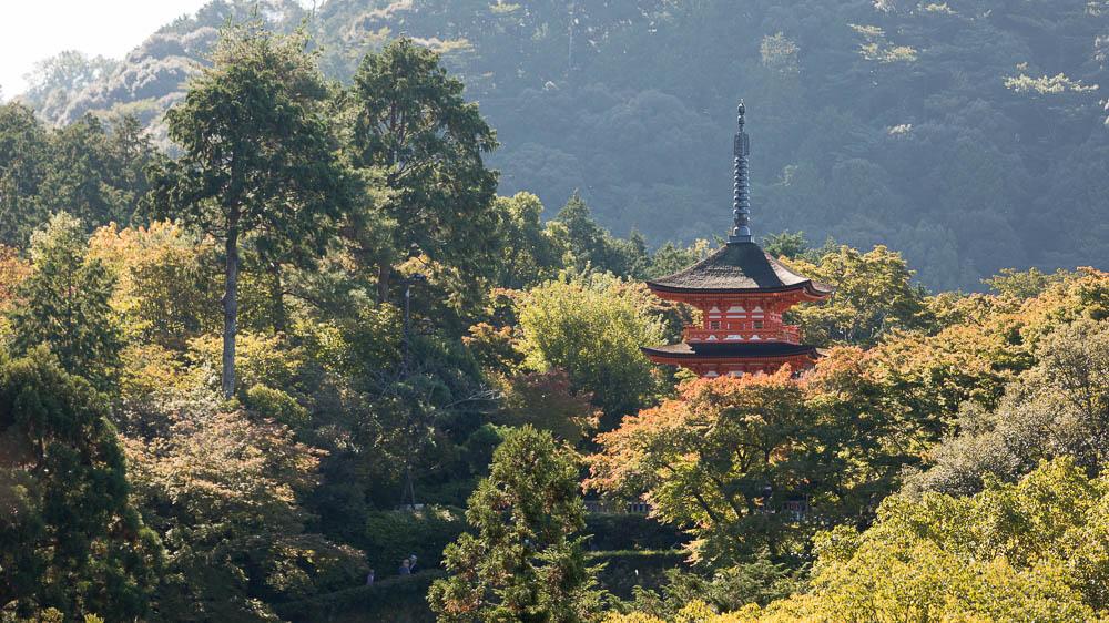 Un automne au Japon (48)