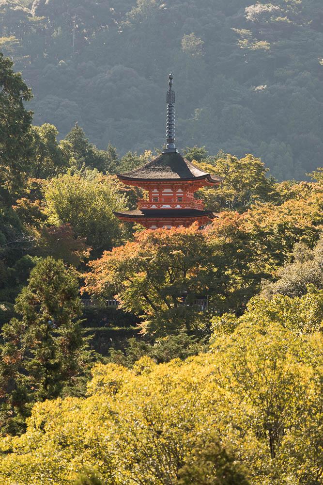 Un automne au Japon (49)