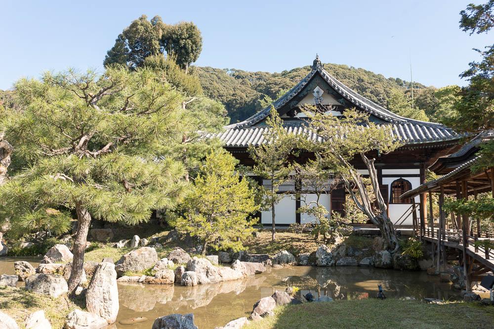 Un automne au Japon (70)