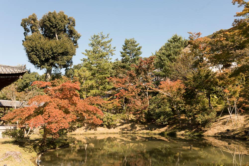 Un automne au Japon (76)