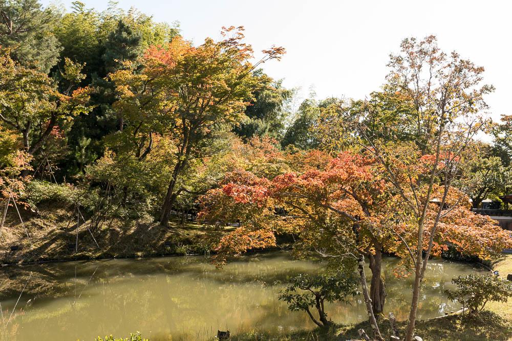 Un automne au Japon (78)