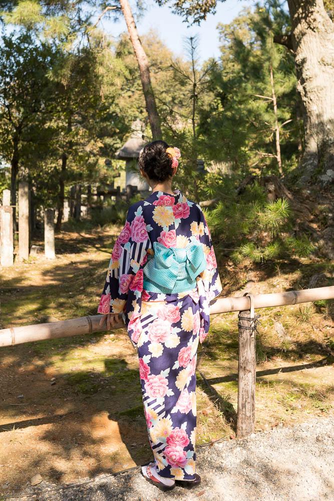 Un automne au Japon (79)