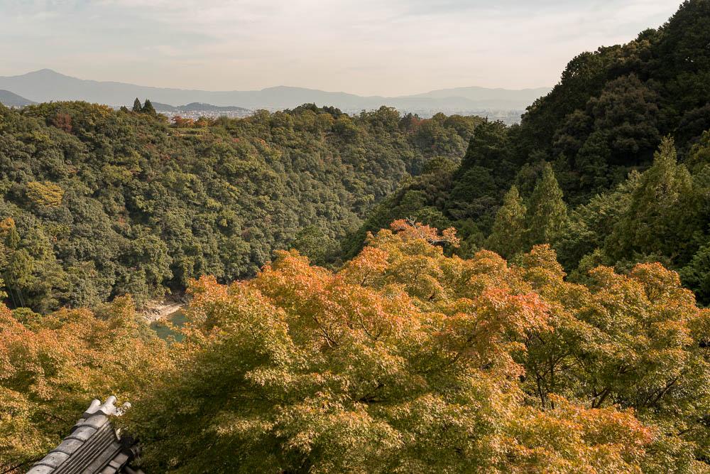 Un automne au Japon (88)