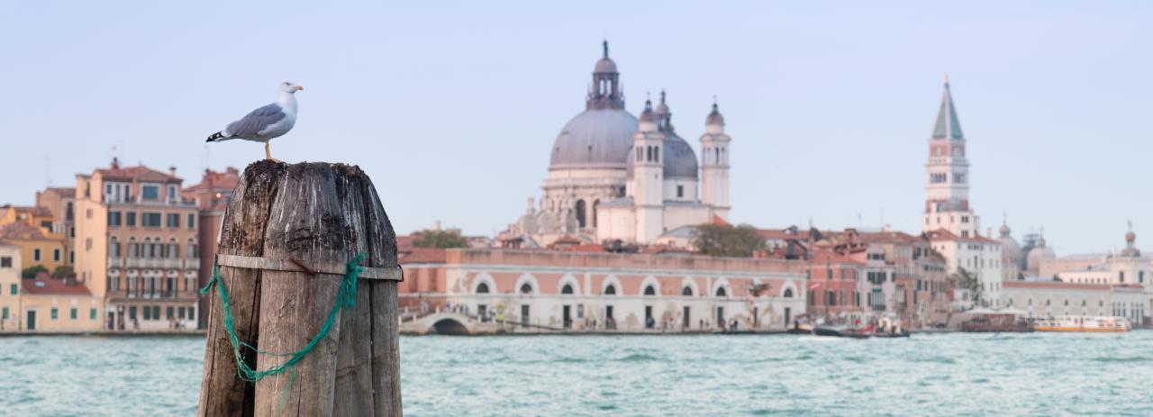 Venise couleurs (96)